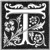 Fancy Middle Ages Letter T.