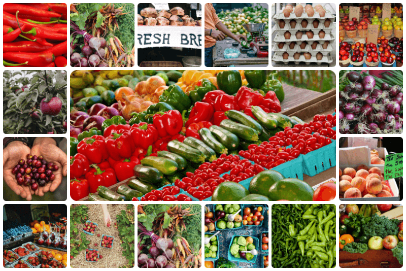 farmers market image collage