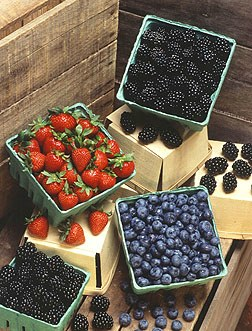 Picture of berries, just one example of the fresh seasonal harvests found at most local Farmers Markets.