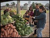 family buying fresh fruit at farmers market